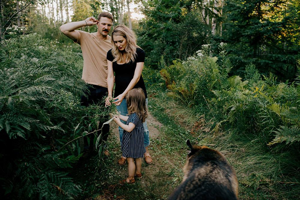 sudbury family portrait family walks in forest
